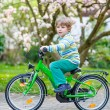 Little preschool kid boy riding with his first bike — Stock Photo #74094321
