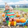 Two little kids boys sitting on big pumpkins on patch — Stock Photo #75740685