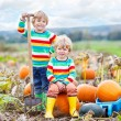 Two little kids boys sitting on big pumpkins on patch — Stock Photo #75740709