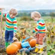 Two little kids boys sitting on big pumpkins on patch — Stock Photo #75740737