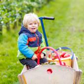 Toddler boy sitting in wooden trolley with red apples — Stock Photo