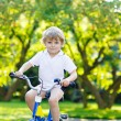 Little preschool kid boy riding with bicycle in summer — Stock Photo #79444276
