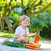 Kid boy of 3 years with carrots in domestic garden — Foto Stock
