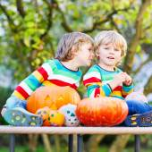 Two little sibling boys making jack-o-lantern for halloween in a — Stock Photo