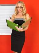 Young Office Worker Holding Businness Files — Stock Photo