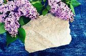 Sfondo con fiori lilla — Foto Stock
