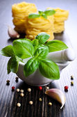 Green Basil — Stock Photo
