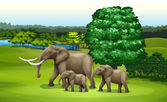Elephants and the green plants — Stock Vector
