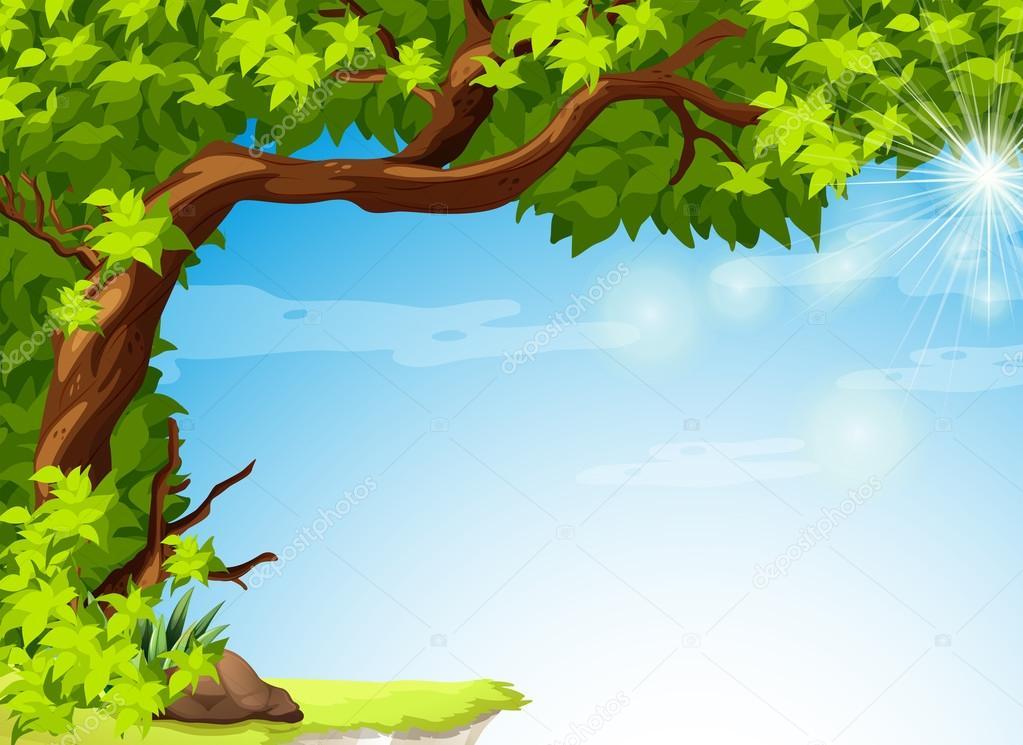 一棵树上有绿色的叶子和清澈湛蓝的天空的插图