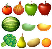 Different fruits — Stock Vector