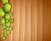 A wooden wall with a vineplant — Wektor stockowy