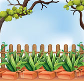 A backyard with a fence — Stock Vector