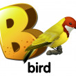 A letter B for bird — Stock Vector #53697487