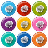 Buttons with seashells — Stock Vector