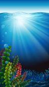 An underwater scenery — Stock Vector