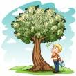 A money tree and a young boy — Stock Vector #63622693