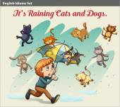An idiom showing a rain with animals — Stock Vector