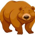 Big brown bear — Stock Vector #67674931