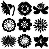 Floral designs in black colors — Stock Vector
