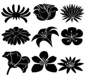 Set of black flowers — Stock Vector