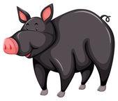Gray pig — Stock Vector