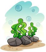 Seaweeds under the sea — Stock Vector