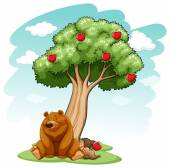 Bear under the tree — Stockvector