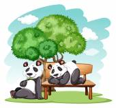 Panda bears at the park — Stockvector