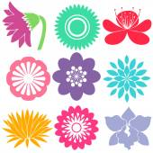 Nine floral templates — Stock Vector
