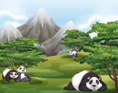 Pandas in forest — Stockvector