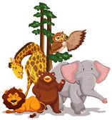Wildlife — Stock Vector
