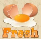 Fresh egg — Stock Vector