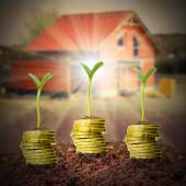 Investments in real estate. — Stock Photo