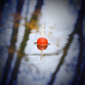 Float for fishing on the water — Foto de Stock