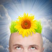 Man with hairstyle from green grass and sunflower. — Stock Photo