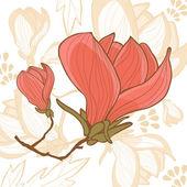 Flor de magnolia hermosa — Vector de stock