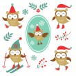 Cute winter owls colorful collection — Stock Vector #61293159