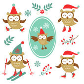 Cute winter owls colorful collection — Stock Vector