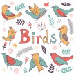 Cute hand drawn colorful birds collection — Stock Vector #69654195