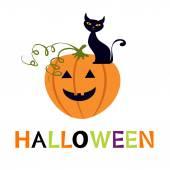 Halloween card with cuteblack cat and pumpkin. vector illustration — Stock Vector