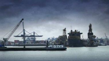 Port of Rotterdam — Stock Video