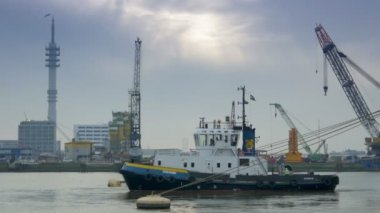 A tugboat at work at the port of Rotterdam — Stock Video