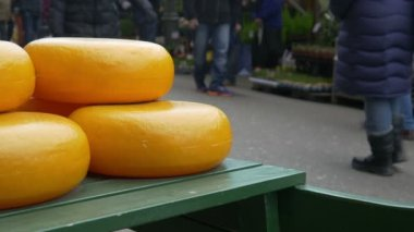 Cheese at the flower market in Amsterdam — Vídeo stock