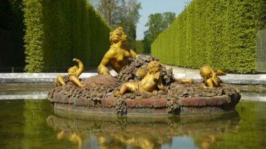 Basin of Flora at Versailles palace gardens — Stock Video