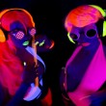 Female disco dancers — Stock Photo #63022869