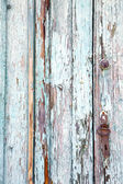 varese   abstract    wood lombardy italy  sumirago — Foto Stock