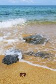 Kho samui   bay asia isle white  beach — Stockfoto