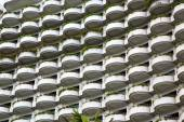 Window plant terrace of the centre  bangkok thailand — Stock Photo