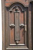 Jerago abstract   wood italy  lombardy  — Stockfoto