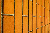 in  the a mozzate   door curch  closed wood italy   — Stock Photo
